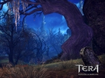 TERA_Vale of the Fang_01
